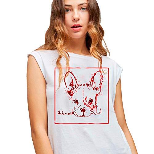 Dolores Promesas PV19 1062BROSA Camiseta, Rosa (Rosa 00), Medium (Tamaño del Fabricante:M) para Mujer
