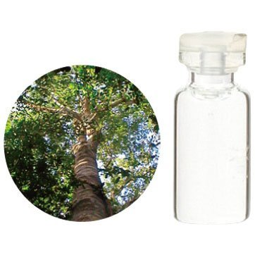 Aroma Japan Import Tree of Life Herbal Life Essential Oil 3ml - Eucalyptus Globulus (Harajuku Culture Pack)