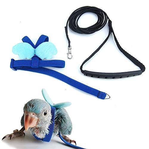ASOCEA - Arnés para pájaros y correas, para loros, periquitos, cuerda voladora, antitracción, para cacatúa, guacamayos, africano, gris