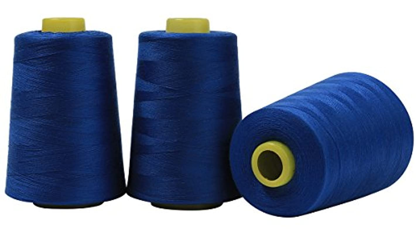 Serger Polyester Threads - Sewing & Quilting 24000 Yard All Purpose Value Pack (4 x 6000 Yards, Blue)