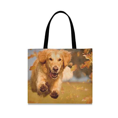 XiangHeFu Federmäppchen Brieftasche Tier Herbstblatt Golden Retriever Hund Hüpfburg Tasche Hochwertiger Großer Reißverschlusshalter