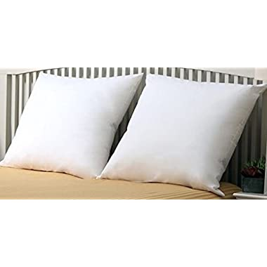 Premium- Set of 2 - 26  x 26  - Euro Pillow-Down Alternative - 100 GSM Shell Fabric - Exclusively for Blowout Bedding RN# 142035