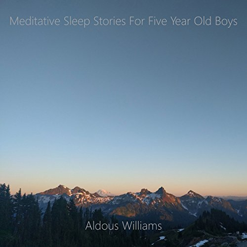 Meditative Sleep Stories for Five Year Old Boys audiobook cover art
