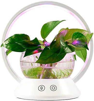 TORCHSTAR LED Indoor Garden Kit Plant Grow Light Fish Tank Design Portable O Shape Basket Sensitive product image