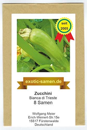 Zucchini -Bianca Di Trieste - 8 Samen
