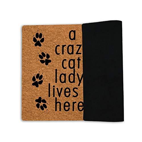 MsMr - Felpudo de entrada con el texto en inglés «A Crazy Cat Lady Lives Here», para el interior, decoración para el hogar y la oficina, de 60 x 40 cm