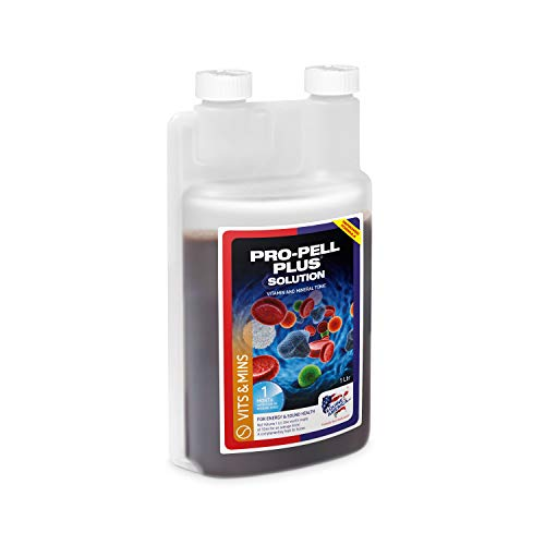 Equine America Pro-Pell Plus | Premium Ready To Use Horse & Pony Supplement | For Energy & Sound Health, 1 Litre