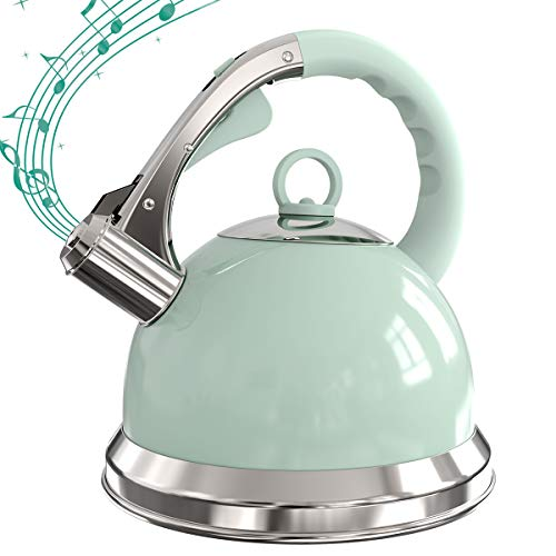 Grey Whistling Tea Kettle 2.6L Stovetop Stainless Steel Teapot with Loud Whistle, Anti-Rust and Anti-heat Handle (Green)