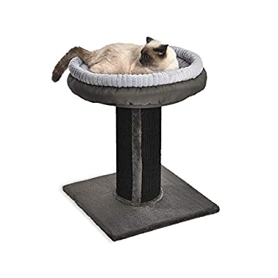 AmazonBasics Extra Large Cat Scratching Post Tree Tower With Bed, 19 x 19 x 26 Inches, Black