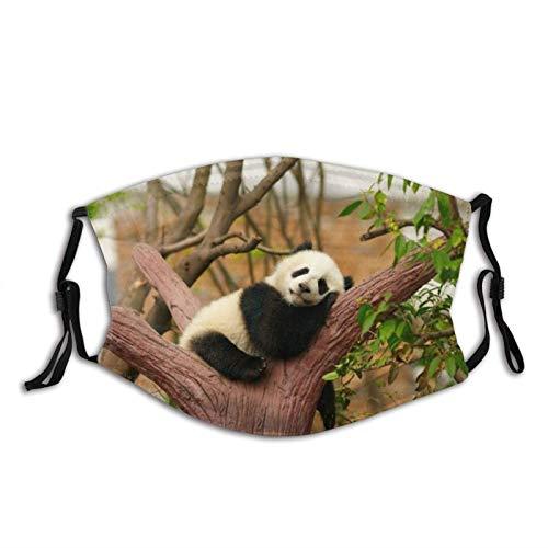 Máscara facial de Panda verde a prueba de polvo transpirable reutilizable bufanda lavable bandana-bebé panda en el árbol animales lindos