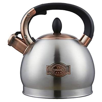 Tea Kettle -2.6 Quart Tea Kettles Stovetop Whistling Teapot Stainless Steel Tea Pots for Stove Top Whistle Tea Pot