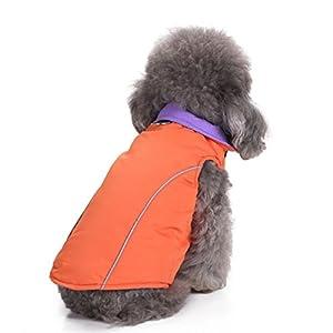 Ranphy coupe-vent réversible Chien Veste d'hiver Doudoune Manteau d'hiver Veste Vêtement chaud par temps froid Gilet rembourré Gilet Combinaison de ski