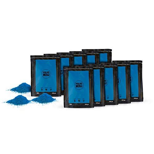 POLVO HOLI - Paket 10 Beutel Holi Pulver von 100 Gramm - 1 Kg Holi-Pulver (Dunkelblau)