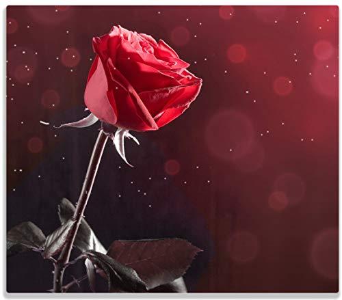 Herdabdeckplatte / Spitzschutz aus Glas, 1-teilig, 60x52cm, für Ceran- und Induktionsherde, Rote Rose Single