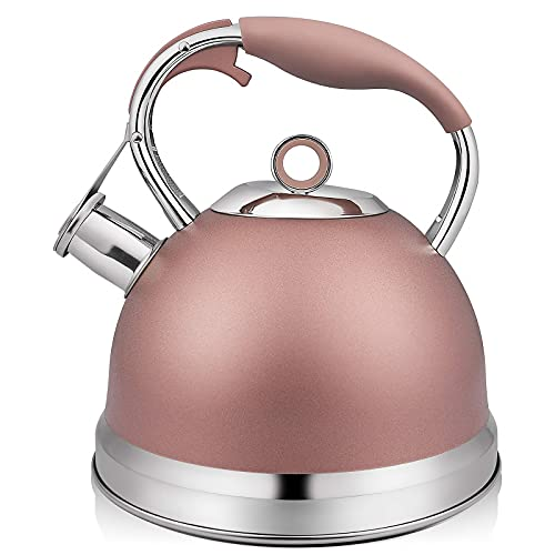 RETTBERG Tea Kettle for Stove Top with Metal Teapots Spout, Whistling Tea Kettles Loud Whistling 2.4 Quart (Champagne Pink)