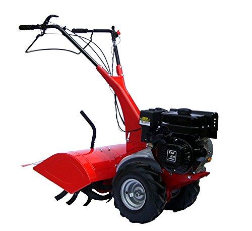 Eurosystems MC 57TM 60Vertikutierer Motorhacke Gartenfräse Benzin-Verbrennungsmotor hergestellt in Italien