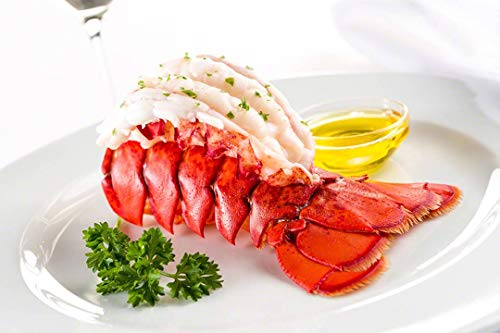 Maine Lobster Now  Maine Lobster Tails 7oz  8oz 6 Tails
