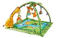 Fisher-Price K4562 - Rainforest Erlebnisdecke, Baby Krabbeldecke mit Spielzeug, Musik, Lichtern und weichem Spielbogen, ab Geburt, mit Giraffe