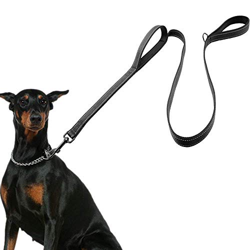 AVANA Reflektierende Hundeleine mit integriertem Kurzführer 2 handschonende gepolsterte Handschlaufen 1,5 Meter Lange Führleine für große und mittelgroße Hunde