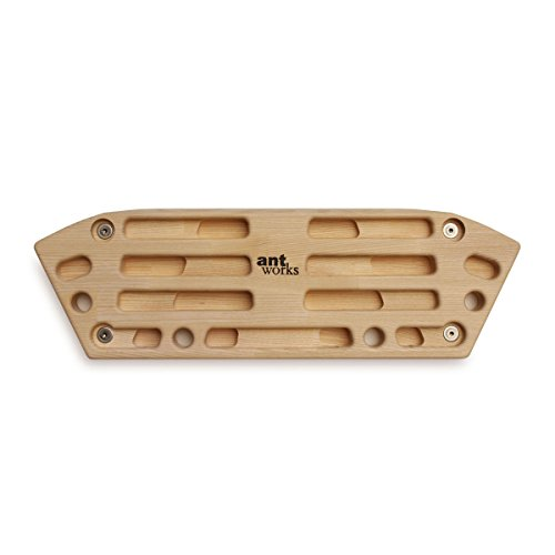 Strong Ant 3 - funktionales Trainingsboard aus Holz
