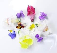 【エディブルフラワー】<特価>10輪入りミックスパック 業務用 彩り鮮やかな食用花が複数種類入っています<数量限定>