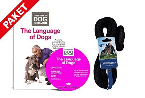 Hundeflüsterer Cesar Millan Leine Hundehalsband Illusion Collar Schwarz gewebte weiche Baumwolle inkl.