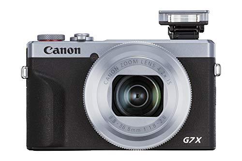 Canon Powershot G7 X Mark Iii Argento Battery Kit