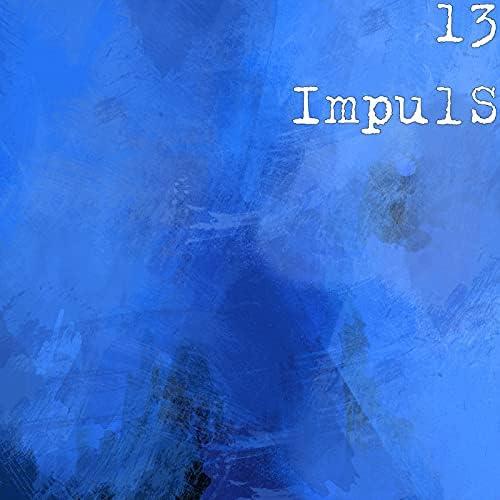 13 ImpulS