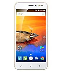 Intex Aqua Lions- X1+(Champ)