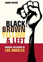 Black, Brown, Yellow, and Left: Radical Activism in Los Angeles (American Crossroads)