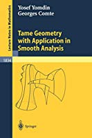 Tame Geometry with Application in Smooth Analysis (Lecture Notes in Mathematics (1834))