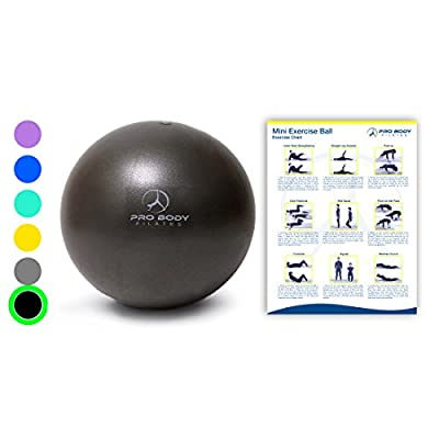Mini Exercise Ball - 9 Inch Small Bender Ball for Stability, Barre, Pilates, Yoga, Core Training and Physical Therapy (Black)