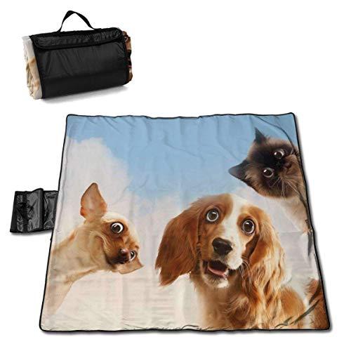 Singledog Picknickdecke Lächeln Katze und Hunde Himmel Wolken Wolken Picknickdecke für Outdoor Handy Mat Tote 145X150CM