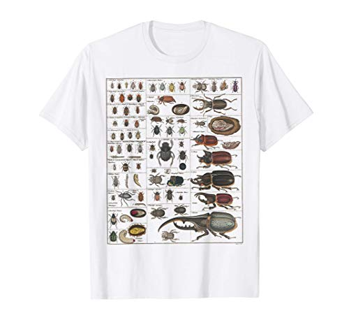 Insects Collection Species Bugs vintage Chart Entomology T-Shirt