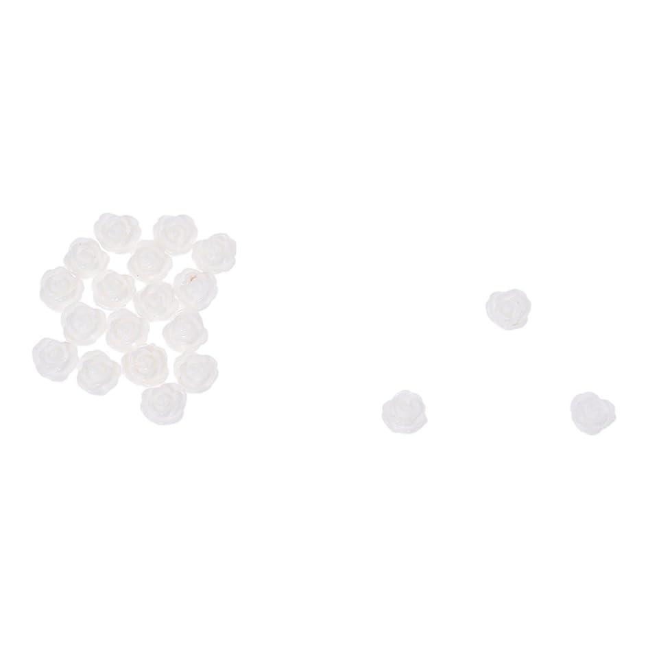 ベギン優れました僕のACAMPTAR ACAMPTAR(R)20×アクリル 3D 白い花 スライスネイルアートヒント UVジェル DIYデコレーション