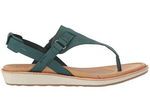 [テバ] レディース 女性用 シューズ 靴 サンダル Encanta Thong – Arctic Forest 10.5 B – Medium [並行輸入品]