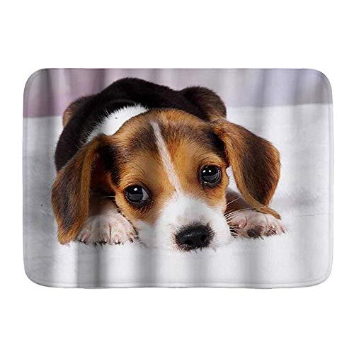 Throwpillow Alfombrilla De Baño Antideslizante Lindo Perro Beagle Cachorro Mascota Alfombra Lavable a Máquina