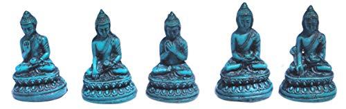 mytibetshop Mini Buddha Statue Set of 5, Buddha Statue in 5 Different, Earth Touching Buddha, Meditating Buddha, Medicine Buddha, Dharma Buddha, Serinity buddhamade by Himalayan Artisan in Nepal
