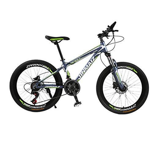 27-Speed Mountainbike Dubbele schijfrem Remmen Lente Vork Aluminium Mountainbike Dames 24 26 Inch Mountainbike