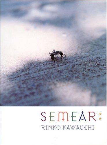 種を蒔く/Semear