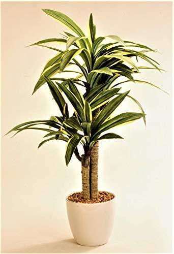 FLOREX 光触媒加工 ドラセナ 陶器 ポット 高さ約68cm 造花 人工観葉樹 (GR/YE, 68)
