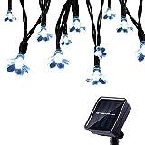 Tuokay 7M 50 LED Luci Natalizie da Esterno Formato di Fiore Luci Decorazioni Natale Catene Luminose Solare per Giardino Patio Albero di Natale (Bianca)