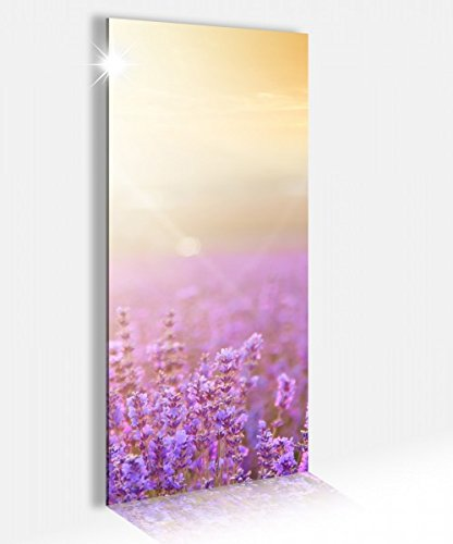 Acrylglasbild 40x100cm Lavendel Feld Sommer Sonnenuntergang Acrylbild Glasbild Acrylglas Acrylglasbilder 14A2487, Acrylglas Größe2:40cmx100cm