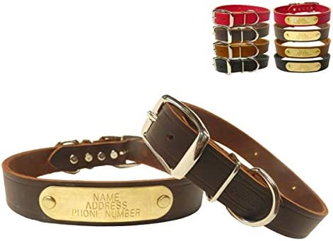Warner Cumberland Leather Dog Collar Free Engraved Brass ID tag USA 19 for 15 17 Neck Rich Brown product image