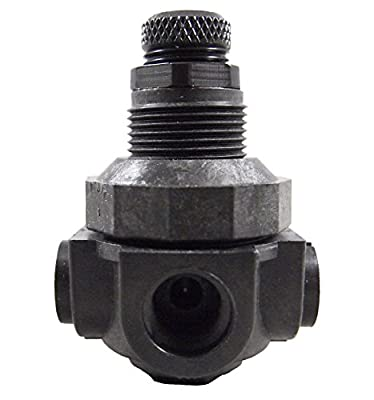Watts P60 Water Pressure Regulator Plastic 1/4 FNPT - 0 - 125 psi (1-PR60) from Pro Water Parts