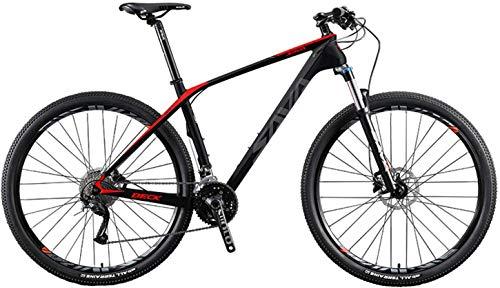 SAVADECK DECK2.0 Bicicleta de montaña de Carbono 26