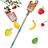 Harrms Fruit Picker Pole Tool, 8 FT Fruit Picker with Lightweight Stainless Steel Telescoping Pole, Fruit Picking Equipment for Getting Fruits