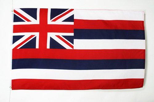 AZ FLAG Flagge Hawaii 90x60cm - HAWAIISCHE Bundesstaat Fahne 60 x 90 cm - flaggen Top Qualität