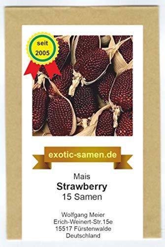 Mais - Popcorn Mais - Ziermais - Strawberry (15 Samen)