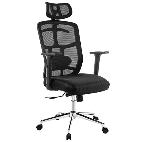 Topskyfurniture Mesh Computer Office Chair Ergonomic Design Chair Skeletal Back Synchronous Mechanism Hanger Function (Black)